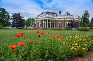 Monticello 1a