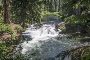 Rogue River near Crater Lake