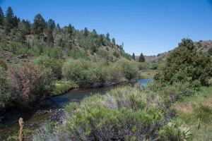 Sevier River 1a