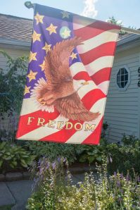 Dot and John's Flag of Freedom