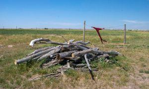 The Prairie Homestead