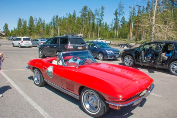 Historic Corvette