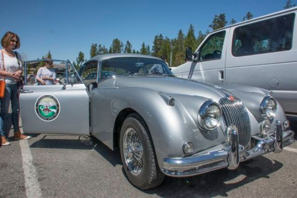 Historic 50's Jaguar