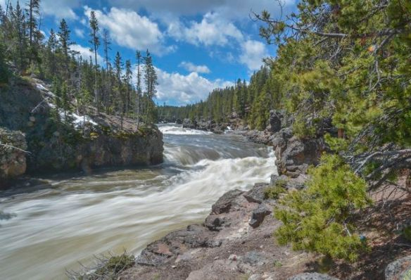 Yellowstone River at Lower Falls