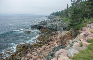 Acadia Sea Shore