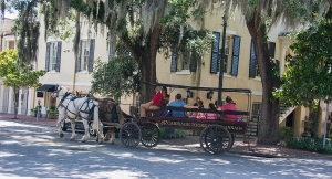 One of the carriages showing people around Savannah