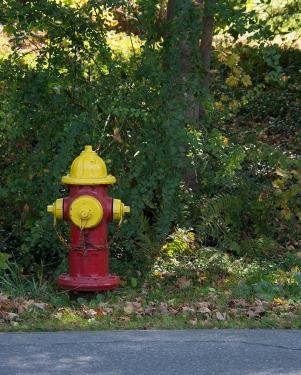 Fireman 1a